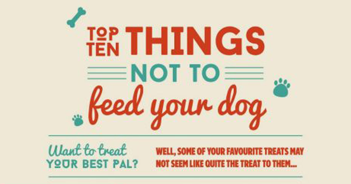 things-not-to-feed-your-dog-graphic-design-infographic-FEAT